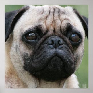 Poster del perro de perrito del barro amasado
