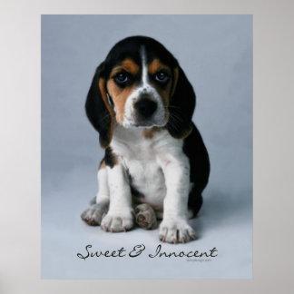 Poster del perro de perrito del beagle