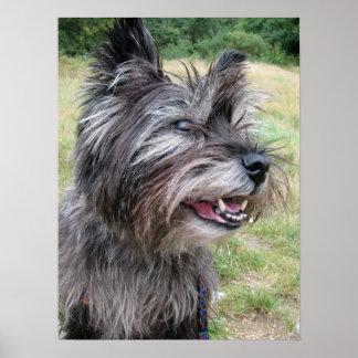 Poster del perro del terrier de mojón, impresión,