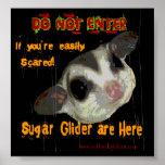 Poster del planeador del azúcar