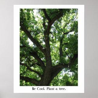 Poster del Planta-UNO-Árbol del Día de la Tierra