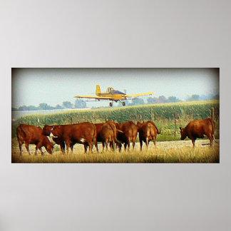 Poster del plumero de la cosecha