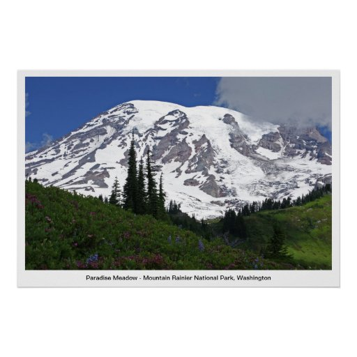 Poster del prado del paraíso del Monte Rainier