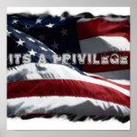 Poster del privilegio