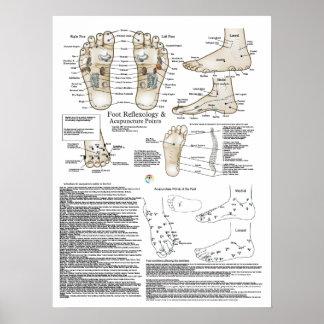 Poster del punto del Reflexology y de la acupuntur