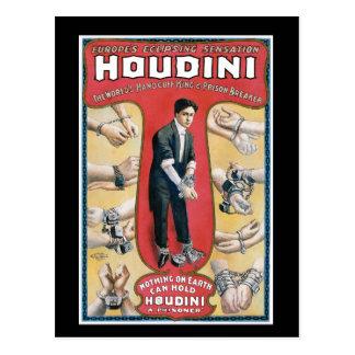 Poster del rey publicidad de la esposas de Houdini Tarjeta Postal