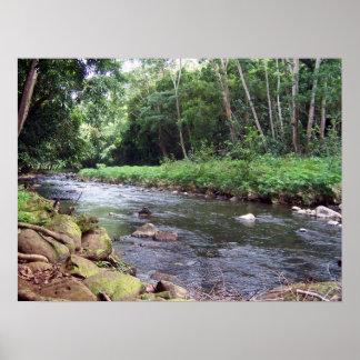 Poster del río de Wailua