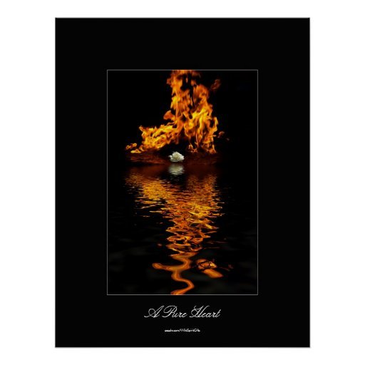 Poster del romance de la flor del fuego y del rosa