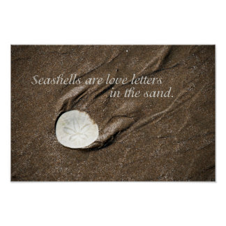 Poster del Seashell