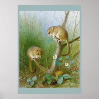 Poster del sitio del niño de los ratones CC0123