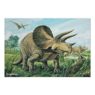 Poster del Triceratops