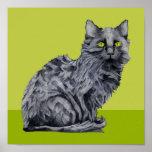 Poster del verde del gato negro