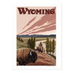 Poster del viaje del vintage del bisonte del río Y Postal