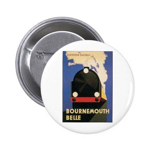 Poster del viaje del vintage del tren de la bellez pins