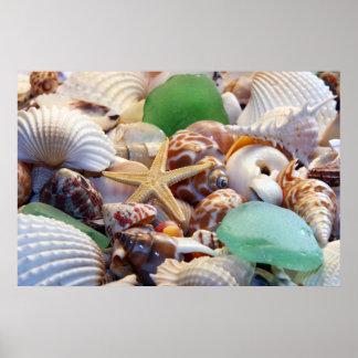 Poster del vidrio de los Seashells, de las estrell
