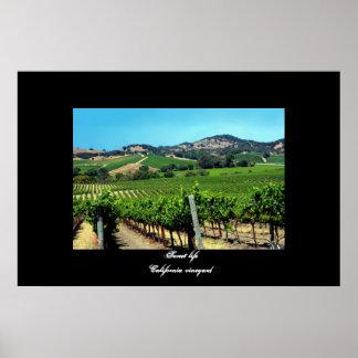 """Poster del viñedo de California"""