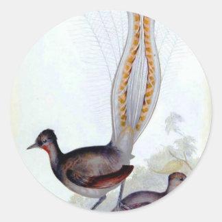 Poster del vintage del pájaro del Lyre Pegatina Redonda