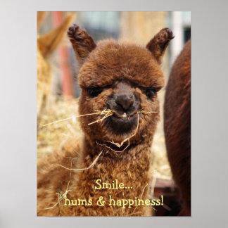 Poster divertido de la alpaca