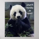 ¿Poster divertido de la panda, lunes tan pronto?