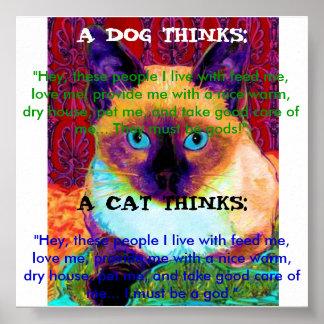 Poster divertido del gato póster