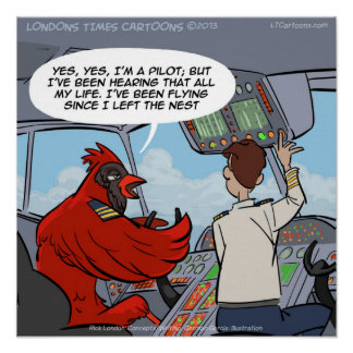 Poster divertido del jet de capitán Byrd Cardinal