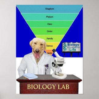 Poster divertido del laboratorio de biología para