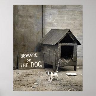 Poster divertido del perro