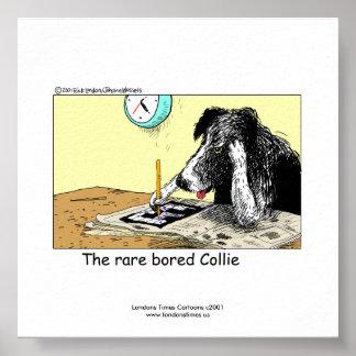 Poster divertido único del border collie