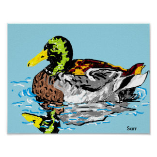 Poster/Duck in a Pond Poster