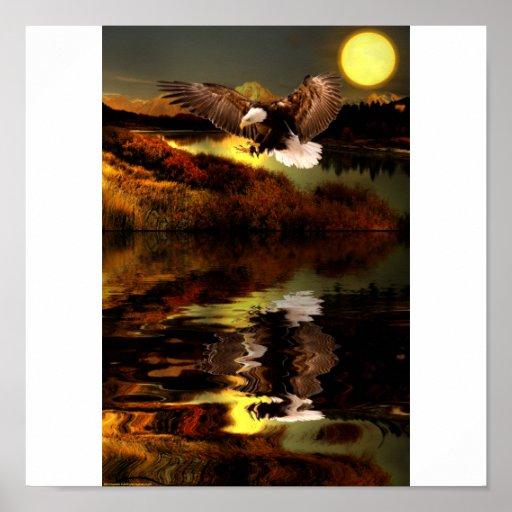 Poster Eagle