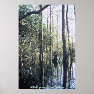 Poster el Canoeing en Okenfenokee NWR