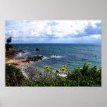 poster - ensenada de Corona del Mar