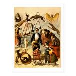 Poster entrenado 1899 del acto de circo del postal