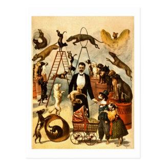 Poster entrenado 1899 del acto de circo del vintag tarjeta postal