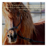 Poster equino de Alliance