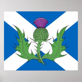 Poster escocés del cardo