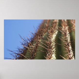Poster espinoso del cactus de IDKP