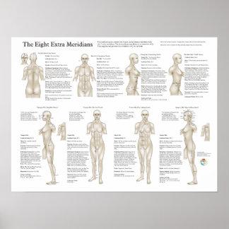 Poster extraordinario de ocho meridianos de la acu