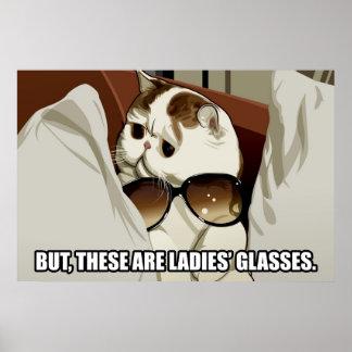 Poster fabuloso del gato de los vidrios (pinta. 1)