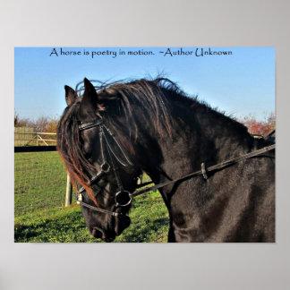 Poster famoso de la cita del caballo del caballo f
