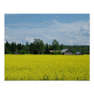 Poster finlandés del campo