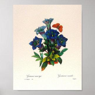 Poster floral del arte del vintage