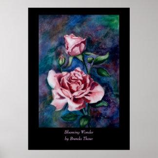 Poster floreciente de la maravilla