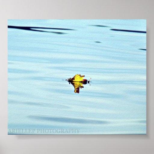 Poster flotando de la hoja