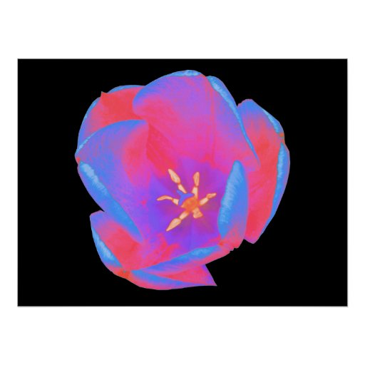 Poster fluorescente del tulipán póster