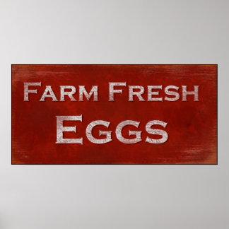 Poster fresco de los huevos de la granja