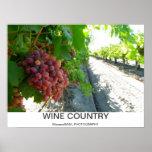 ¡Poster fresco del país vinícola!