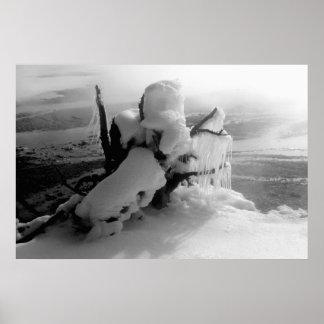 Poster frígido del invierno póster