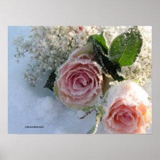 Poster Frozen roses
