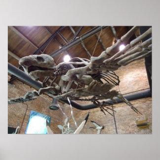 Poster gigante de Archelon de la tortuga de mar